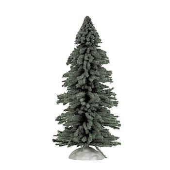 9 Spruce Tree