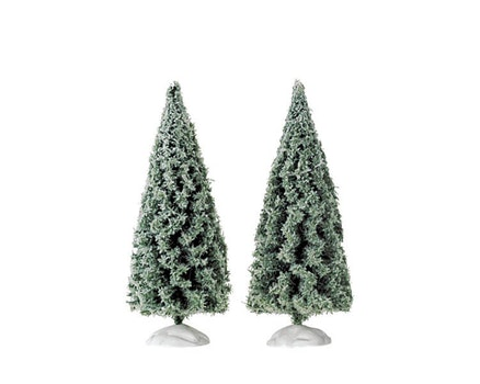 Spruce Tree Small