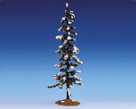 Snowy Pine Extra Large