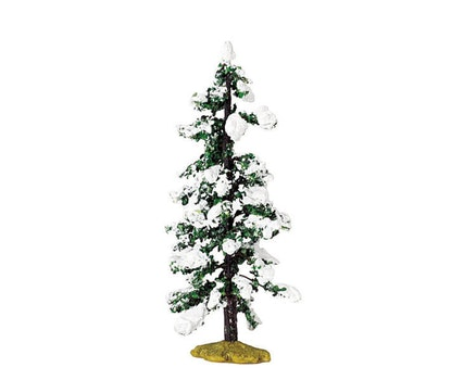 Snowy Pine Medium