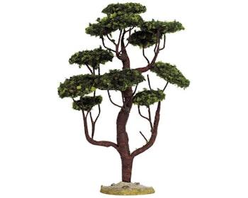 Cypress Large