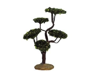 Cypress Medium