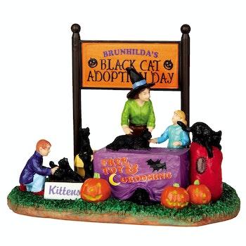 Black Cat Adoption