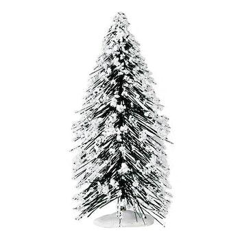 6 Needle Pine Tree