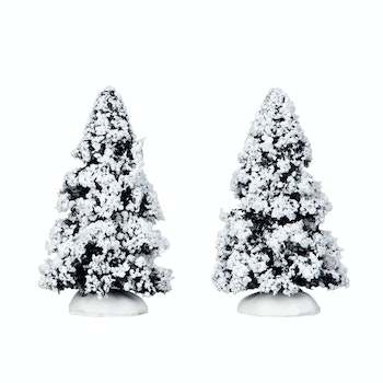4 Evergreen Tree, Set Of 2