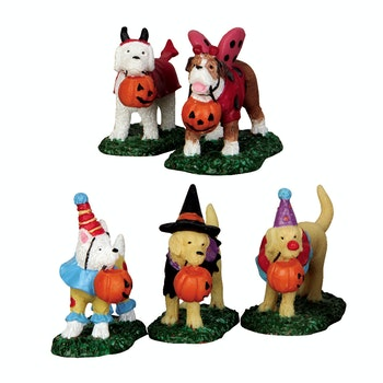 Trick Or Treating Dogs, Set Of 5