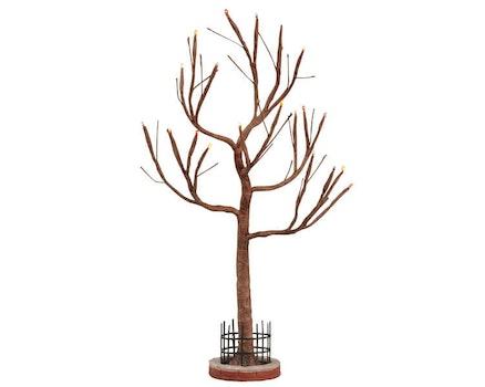 Lighted Hickory Tree