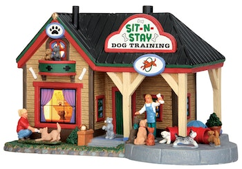 Sit-N-Stay Dog Training
