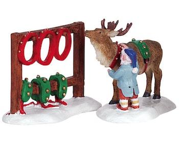 Readying Reindeer