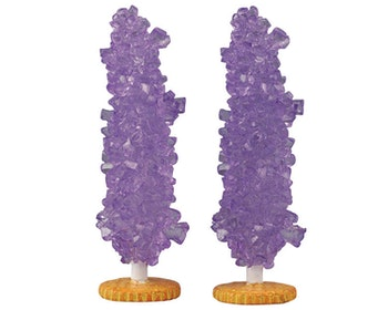 Rock Candy Tree Grape