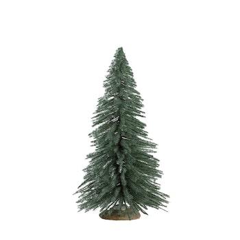 Spruce Tree, Medium