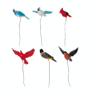Assorted Birds, Set Of 6