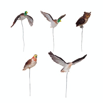 Assorted Birds, Set Of 5