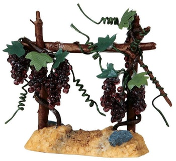 Valley Vineyard Merlot Grapes