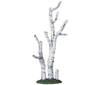 Paper Birch Tree Large