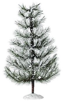 White Pine Extra Large