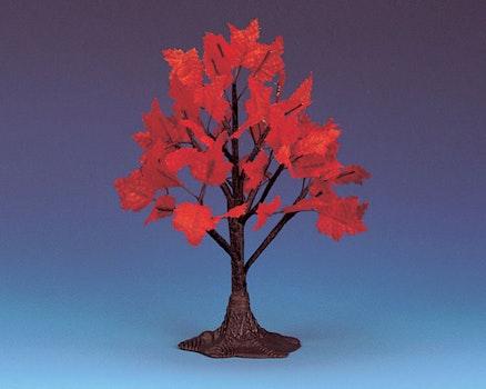 Maple Tree Medium