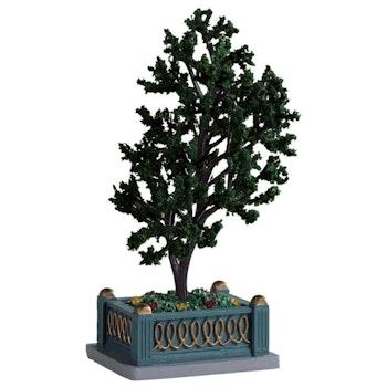 Village Tree