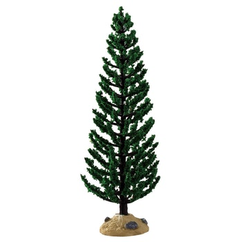 Green Juniper Tree